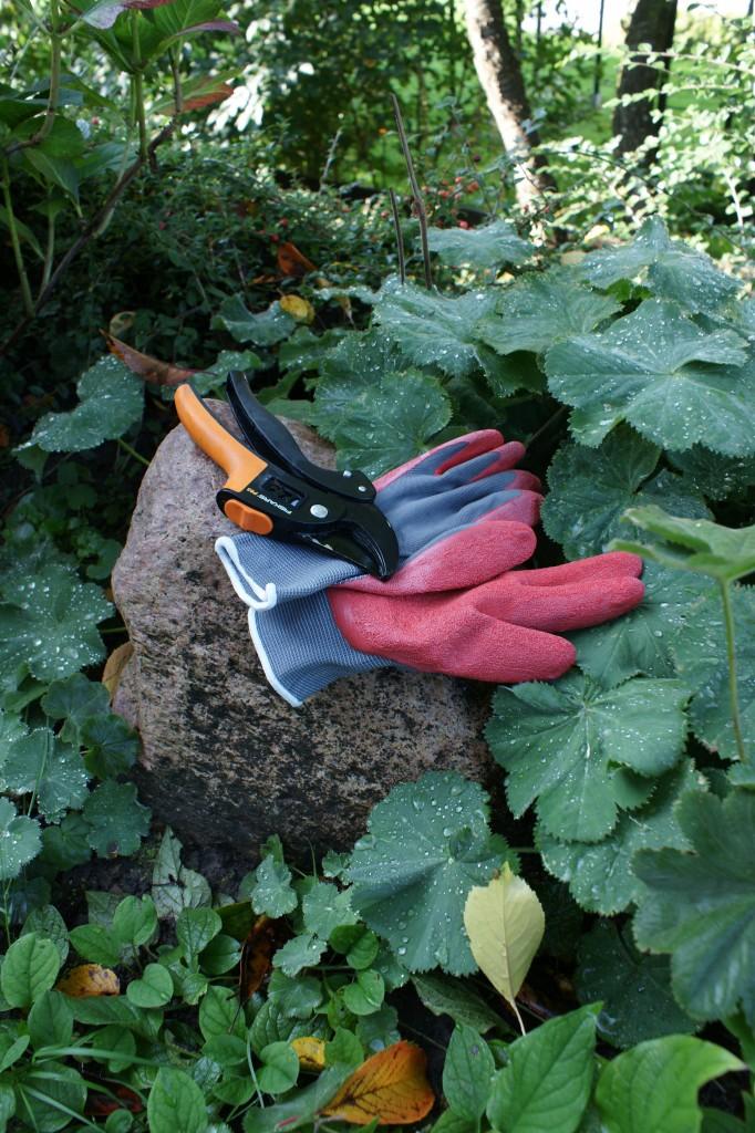 Trädgårdsdesign – trädgårdshandskar och sekatör